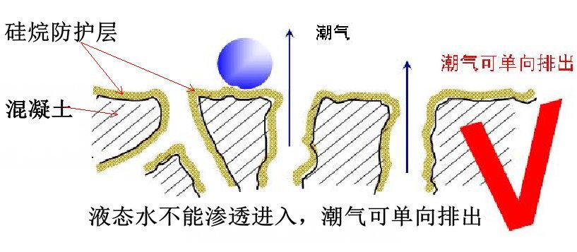 硅烷浸渍珍爱的混凝土,潮气可单向排挤